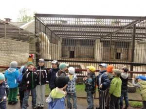 Trennipoisid loomaaias