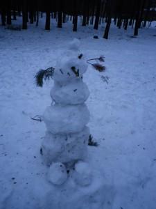 Pirita- Kose lumememmed