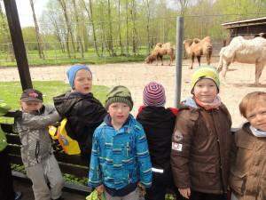 Meelespea loomaaias 2015